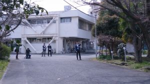 静岡市の桜開花宣言?